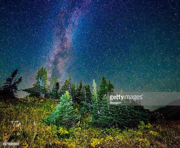 Starry Night View Glacier National Park Montana Logan Pass