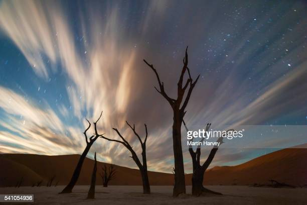 Stars and storm clouds over the dead acacia trees in Dead Vlei, Sossusvlei, Namibia