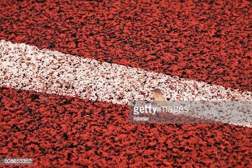 Start. Red running racetrack on the outdoor athletic stadium : Stock Photo