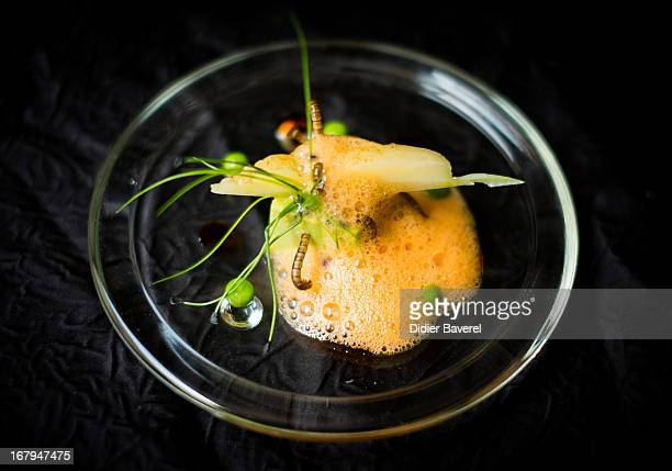 A starter dish of 'Petit pois carre et son ecume de Carottes vers de farine' peas carrots and worms prepared by French chef David Faure in his...