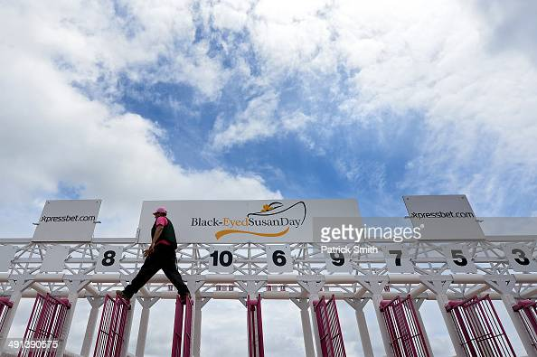 A starting gate crew member walks on top a gate before BlackEyed Susan Day racing a day prior to the 139th Preakness Stakes at Pimlico Race Course on...