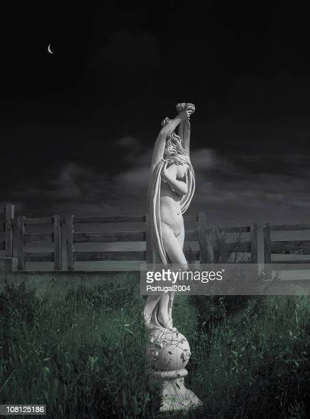 Statue in Garden at Night