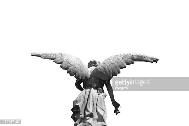 Statue of a winged angel photographed from behind