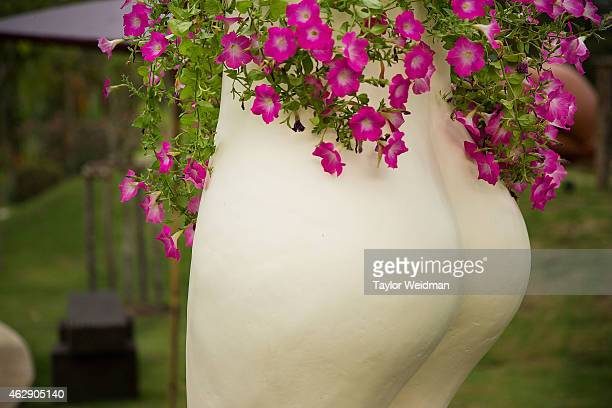 A statue of buttocks is displayed at the Erotic Garden and Teahouse on February 6 2015 in Mae Rim Thailand The Erotic Garden and Teahouse opened in...