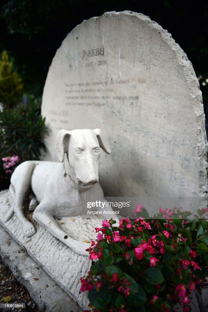 A statue of dog is seen on a grave in the cemetery on September 10, 2013 in Asnieres-sur-Seine, France. Le Cimetiere Des Chiens is the world's oldest pet cemetery situated in a north western suburb of Paris. Created in 1899 after French law dictated that domestic animals could not be thrown into household rubbish it was designated a historical site in 1987. Today there are over 869 graves, mostly for dogs and cats but including rabbits and a monkey. The cemetery is often referred to as the Pere Lachaise cemetery for animals.