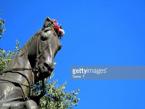 Statue of the Horse : Bildbanksbilder