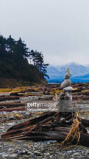 Statue On Snow Covered Landscape Against Sky