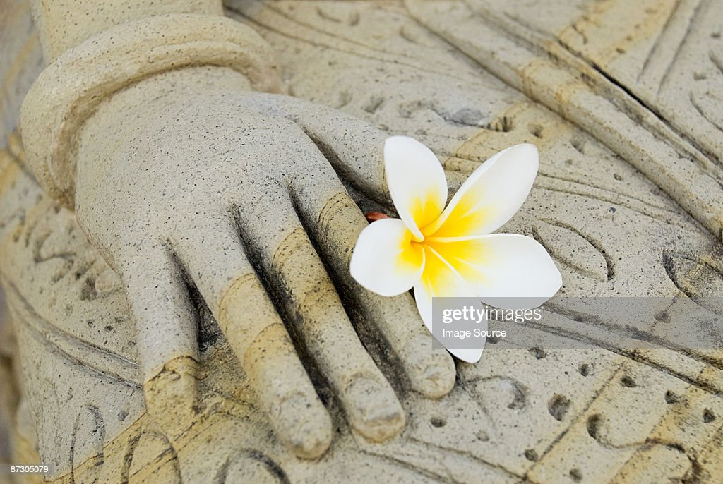 Statue with a flower : Stock Photo