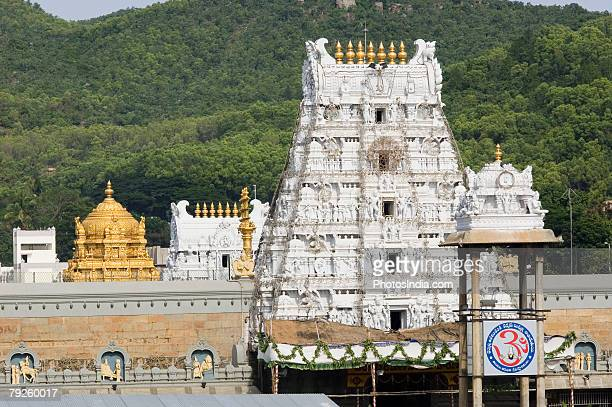 'Statues carved on a temple, Tirupati, Tirumala Venkateswara Temple, Tirumala, Andhra Pradesh, India'