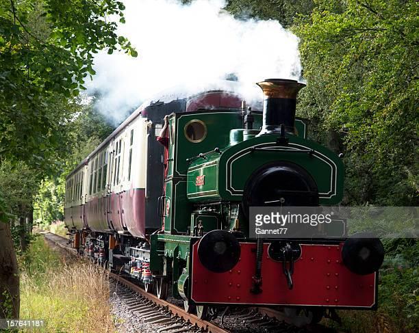 Dampflokomotive auf der Deeside Railway