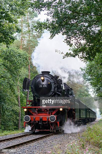 Steam locomotive with passenger railway cars in a forest