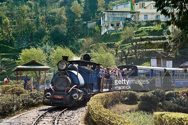 Steam Train enthusiasts on the Darjeeling Toy Trai