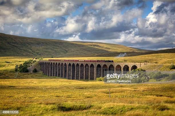 Steam train on the Ribblehead Viaduct