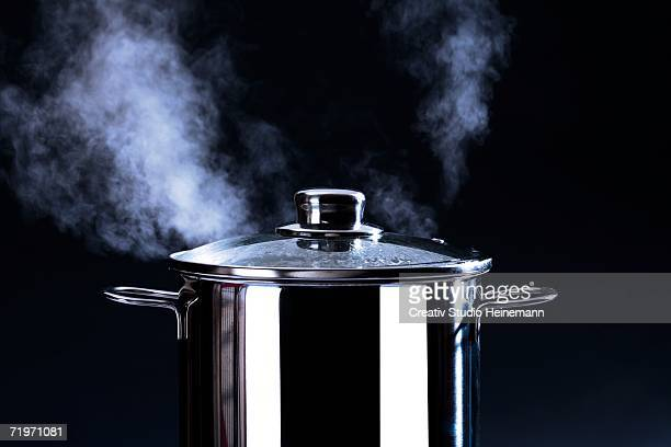 Steaming cooking pot, close-up
