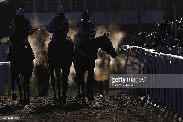 Steaming horses return at Cheltenham Racecourse on January 28 2017 in Cheltenham England