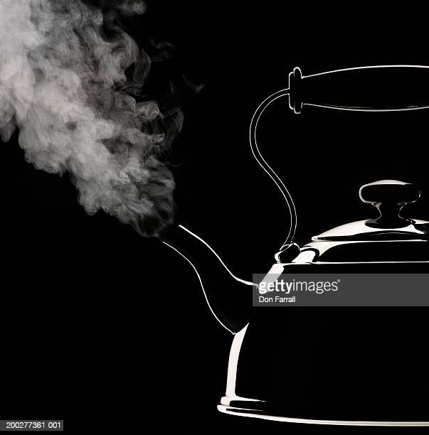 Steaming kettle