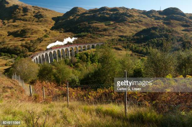 Steamy train crosses a famous bridge in the higlands