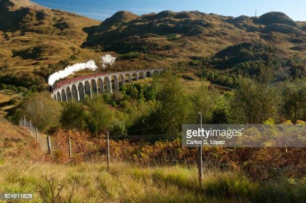 Steamy train crossing famous bridge in the higlands