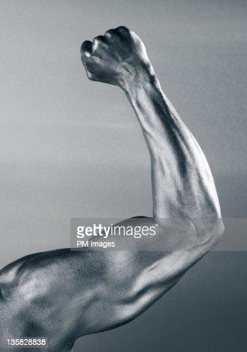Steel Arm : Stock Photo