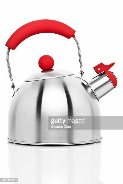 Steel steam kettle