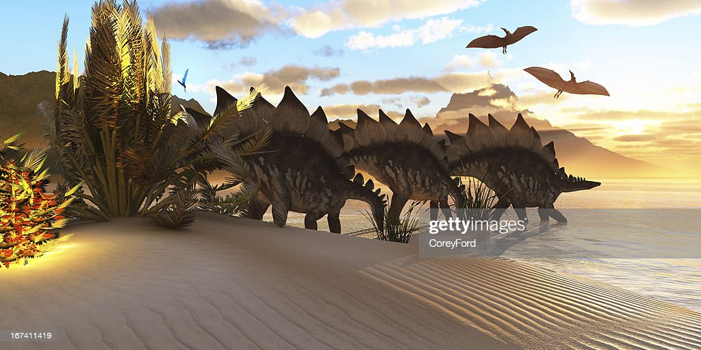 Stegosaurus Dinosaur : Stock Photo