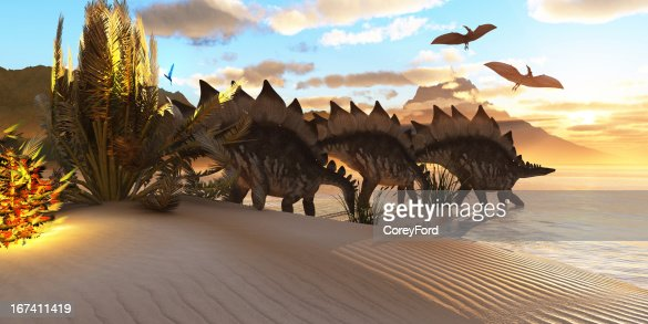 Stegosaurus Dinosaur : Stock Photo