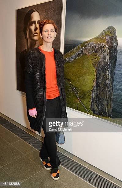 Stella Tennant attends the Pringle of Scotland Fully Fashioned Exhibition and Autumn/Winter 2015 Womenswear Runway Show at The Serpentine Gallery on...