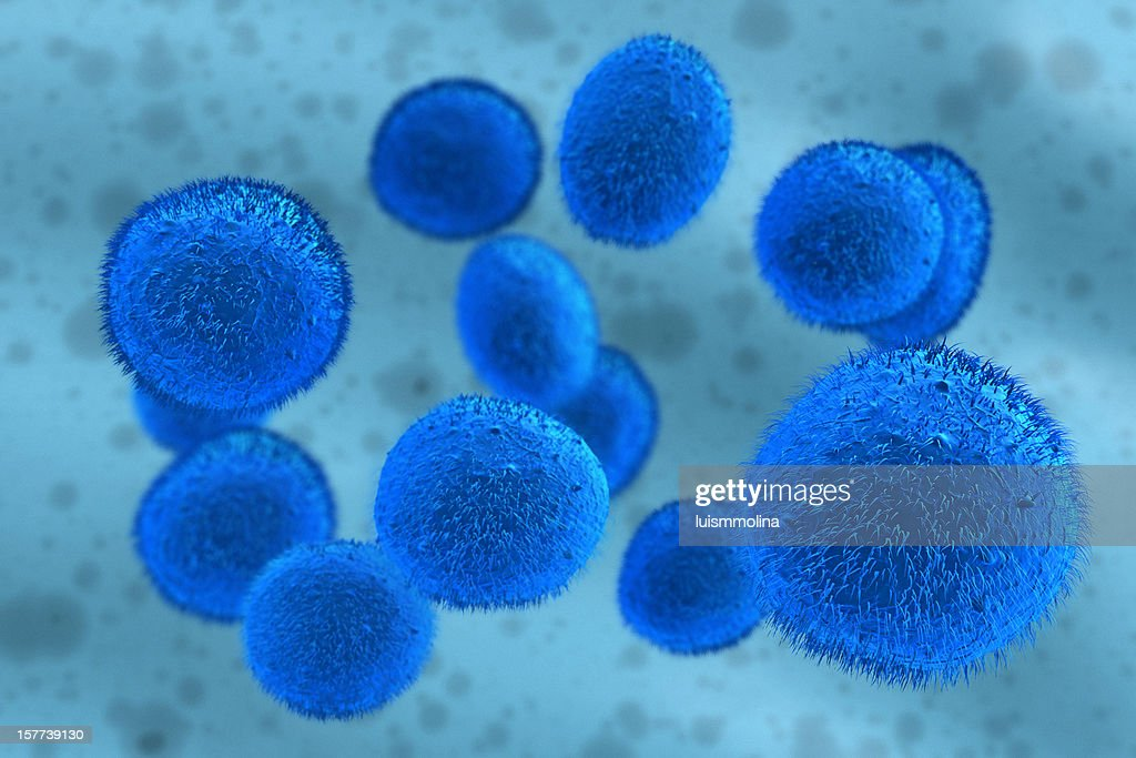 Stem Cell : Stock Photo