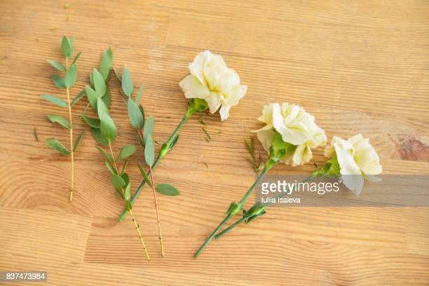 Stems and flowers on table