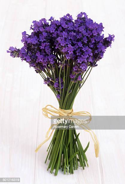 Stems of lavender tied with raffia on white