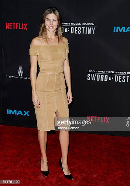Stephanie Cayo attends the Premiere of Netflix's 'Crouching Tiger Hidden Dragon Sword Of Destiny' at AMC Universal City Walk on February 22 2016 in...
