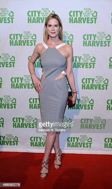 Stephanie March attends 20th Annual City Harvest An Evening Of Practical Magic at Cipriani 42nd Street on April 24 2014 in New York City