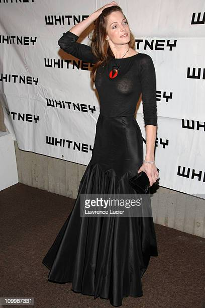 Stephanie Seymour during 2006 Whitney Gala Celebrating Picasso and American Art Arrivals at The Whitney Museurmof American Art in New York City New...