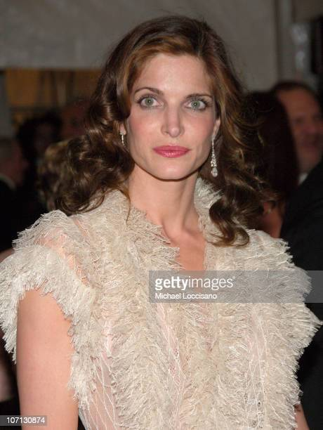 Stephanie Seymour during 'Poiret King of Fashion' Costume Institute Gala at The Metropolitan Museum of Art Departures at The Metropolitan Museum of...