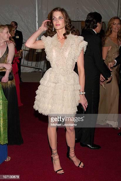 Stephanie Seymour during 'Poiret King of Fashion' Costume Institute Gala at The Metropolitan Museum of Art Departures at The Metropolitan Museum of...