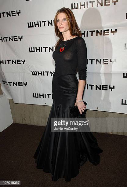 Stephanie Seymour during The 2006 Whitney Gala Celebrating Picasso and American Art at The Whitney Museum in New York City New York United States