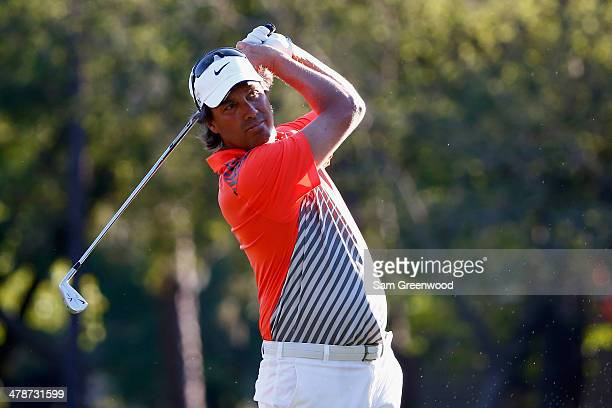 Stephen Ames of Canada hits a shot on the 17th hole during the second round of the Valspar Championship at Innisbrook Resort and Golf Club on March...