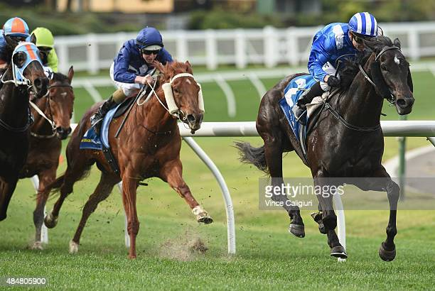 Stephen Baster riding Tawteen wins Race 4 during Melbourne racing at Moonee Valley racecourse on August 22 2015 in Melbourne Australia