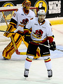 Stephen Harper and goalie Charlie Graham of the Belleville Bulls watches the play against the Mississauga Steelheads during the OHL game on January...