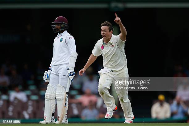 Stephen O'Keefe of Australia celebrates his first wicket on home soil West Indies captain Jason Holder during the first day of the third Test match...
