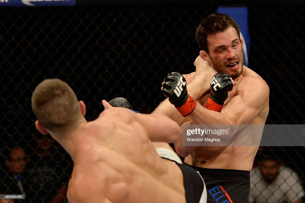 The Ultimate Fighter Finale