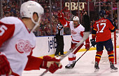 Stephen Weiss of the Detroit Red Wings celebrates a goal during a game against the Florida Panthers at BBT Center on January 27 2015 in Sunrise...