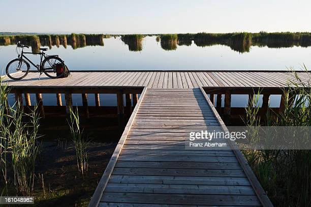 Steppe lake, Neusiedlersee, Austria