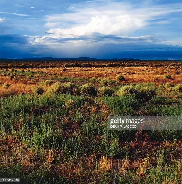 Steppe semidesert after a storm including Uzcudun and Las Chapas Chubut province Patagonia Argentina