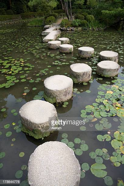 Stepping stones lily pads pond