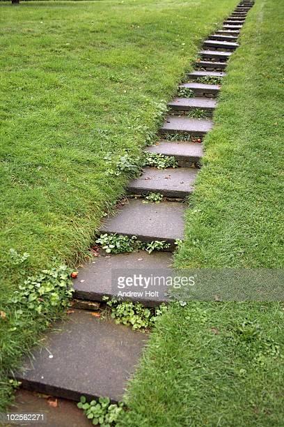 Steps rising in grass hillside