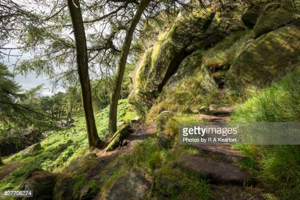 Steps to The Roaches, Staffordshire, England