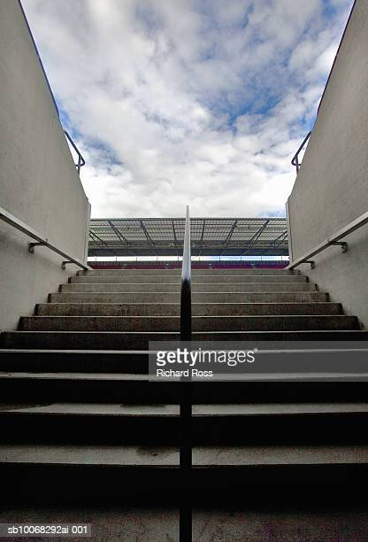 Steps towards stadium