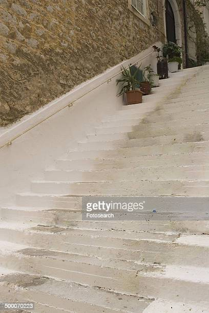 Steps with plants
