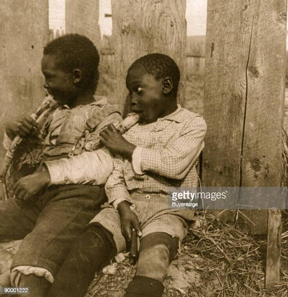 STATES A stereoview by HC White depicts two African American children eating sugar cane in front of a fence 1901